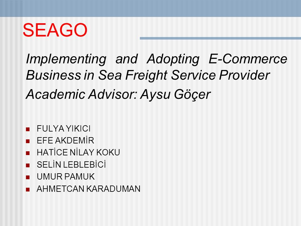 SEAGO Implementing and Adopting E-Commerce Business in Sea Freight Service Provider. Academic Advisor: Aysu Göçer.