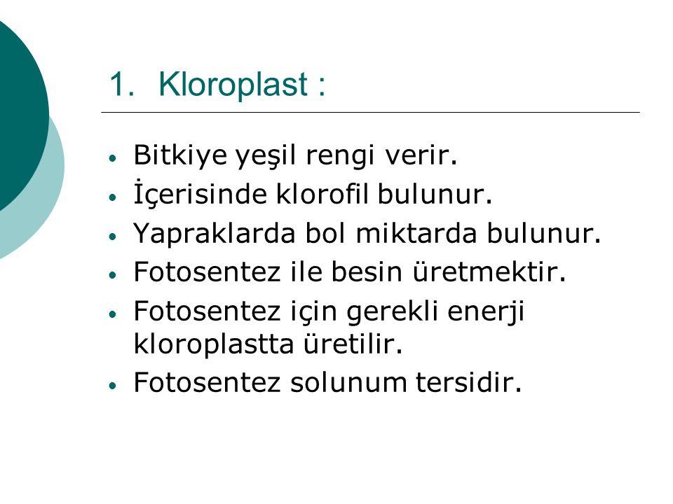 Kloroplast : Bitkiye yeşil rengi verir. İçerisinde klorofil bulunur.