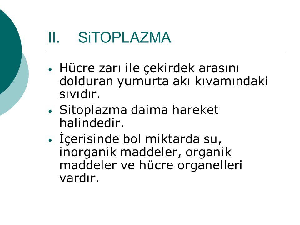 SiTOPLAZMA Hücre zarı ile çekirdek arasını dolduran yumurta akı kıvamındaki sıvıdır. Sitoplazma daima hareket halindedir.
