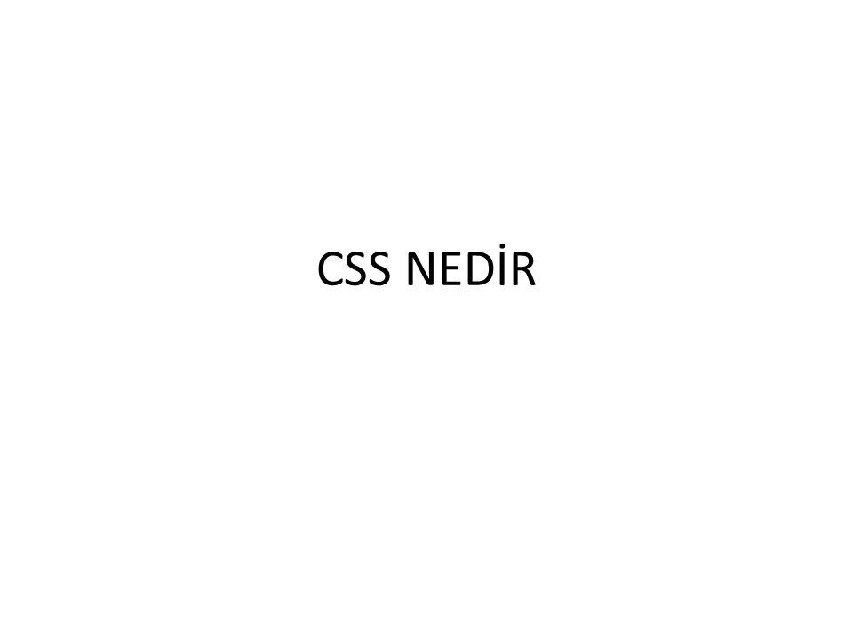 CSS NEDİR