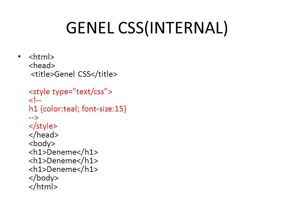 GENEL CSS(INTERNAL)