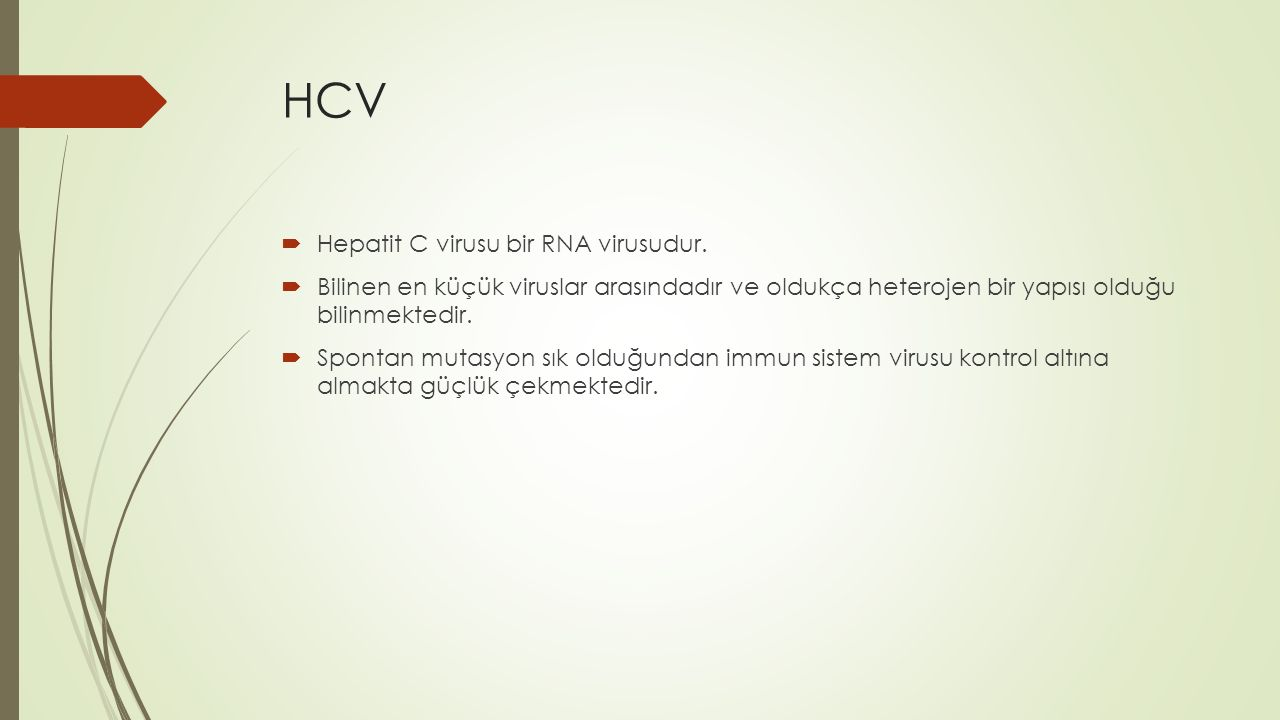 HCV Hepatit C virusu bir RNA virusudur.