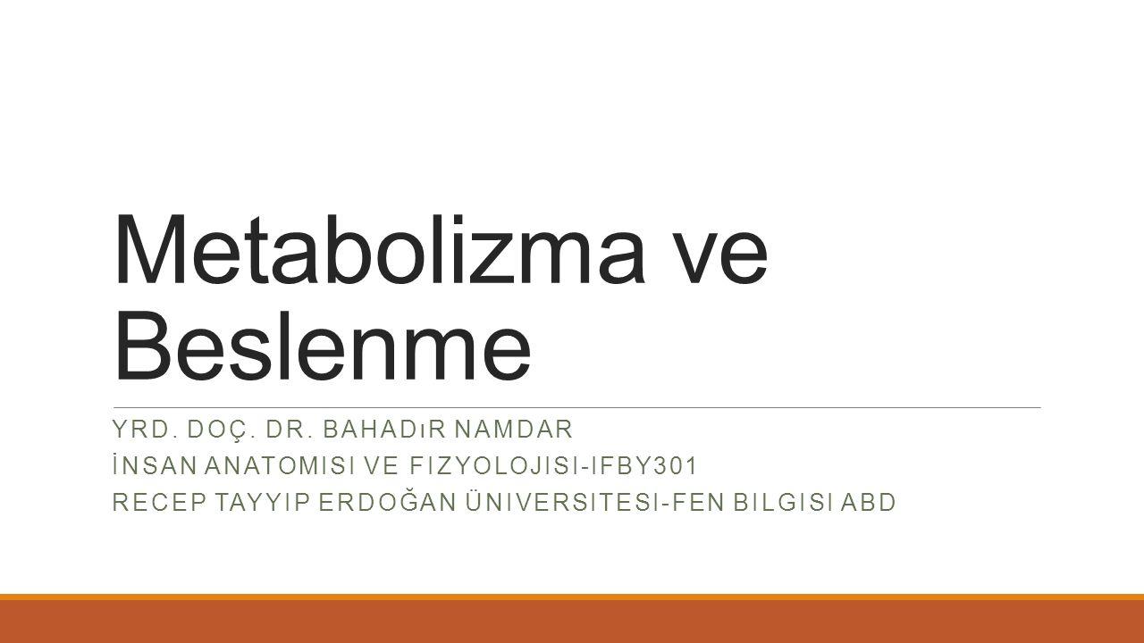 Metabolizma ve Beslenme
