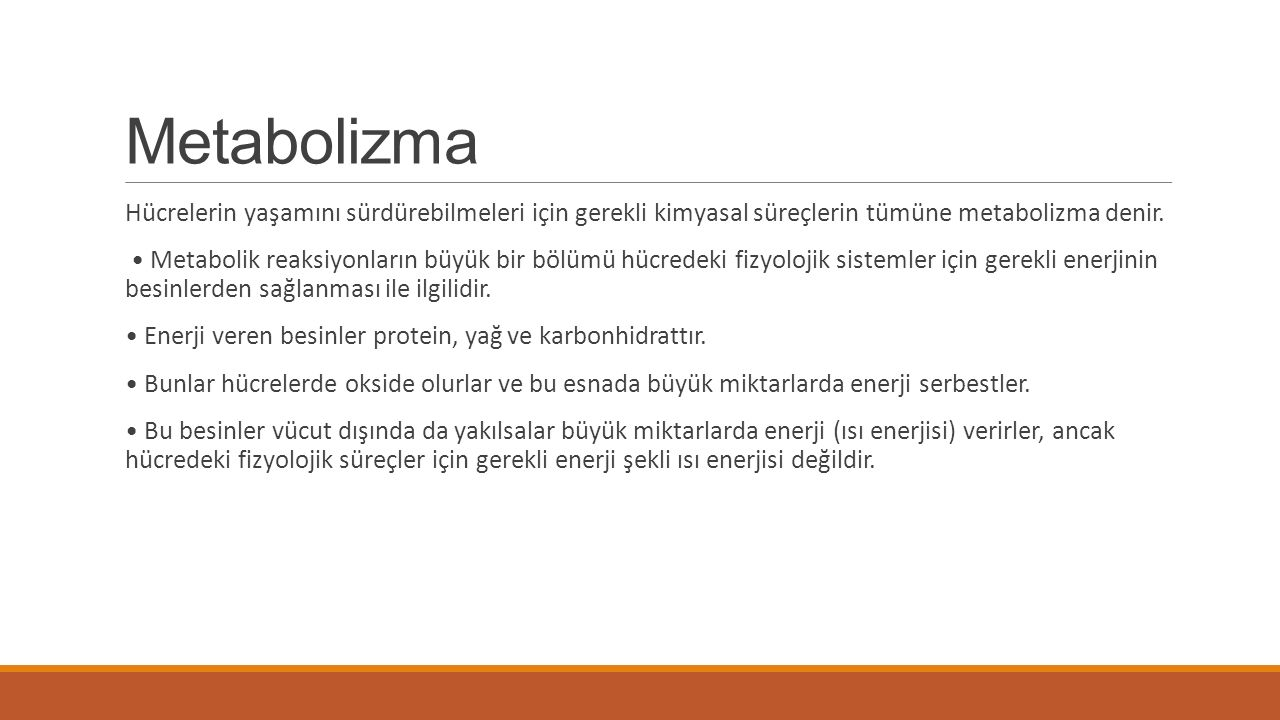 Metabolizma Hücrelerin yaşamını sürdürebilmeleri için gerekli kimyasal süreçlerin tümüne metabolizma denir.