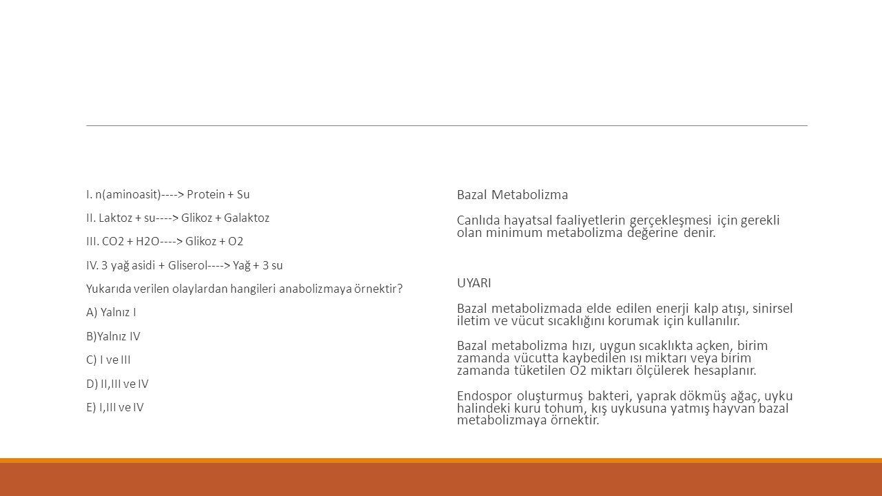 I. n(aminoasit)----> Protein + Su