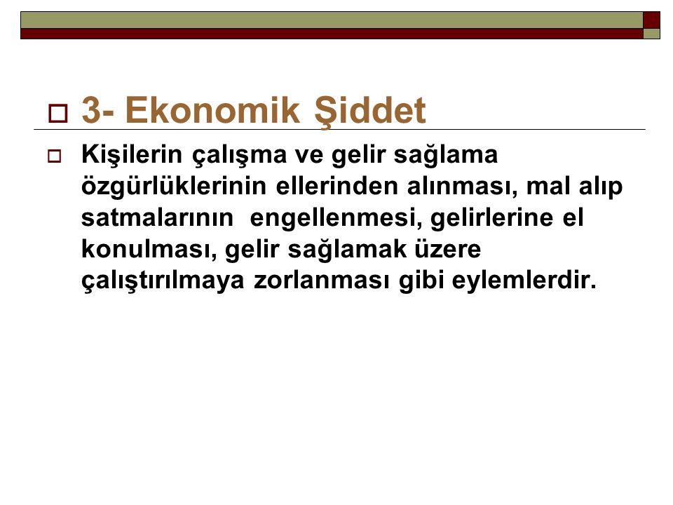 3- Ekonomik Şiddet