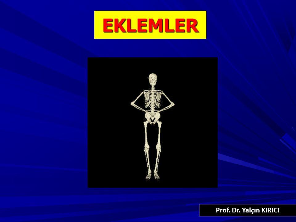 EKLEMLER 1 Prof. Dr. Yalçın KIRICI