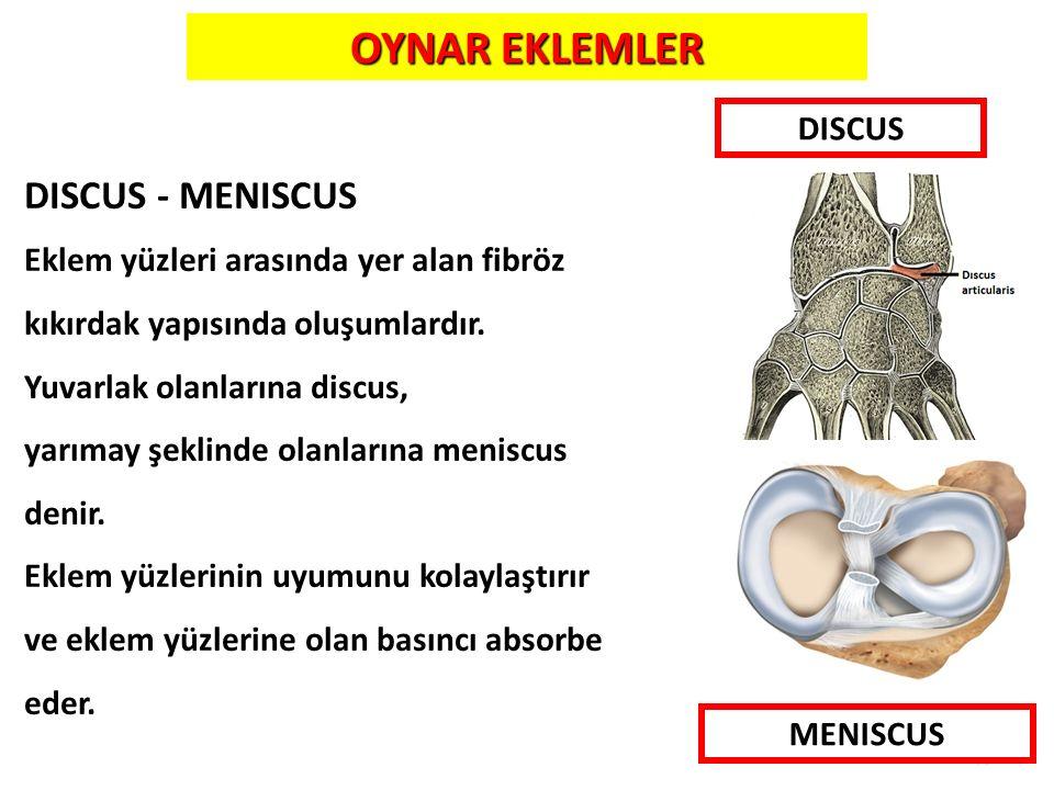 OYNAR EKLEMLER DISCUS - MENISCUS DISCUS