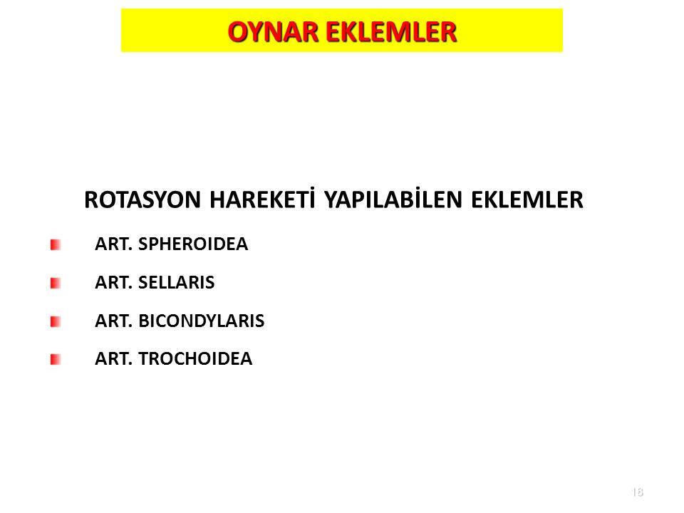 ROTASYON HAREKETİ YAPILABİLEN EKLEMLER