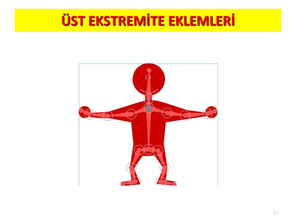 ÜST EKSTREMİTE EKLEMLERİ