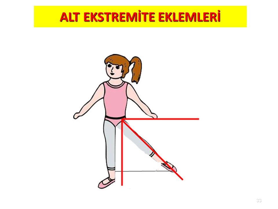 ALT EKSTREMİTE EKLEMLERİ