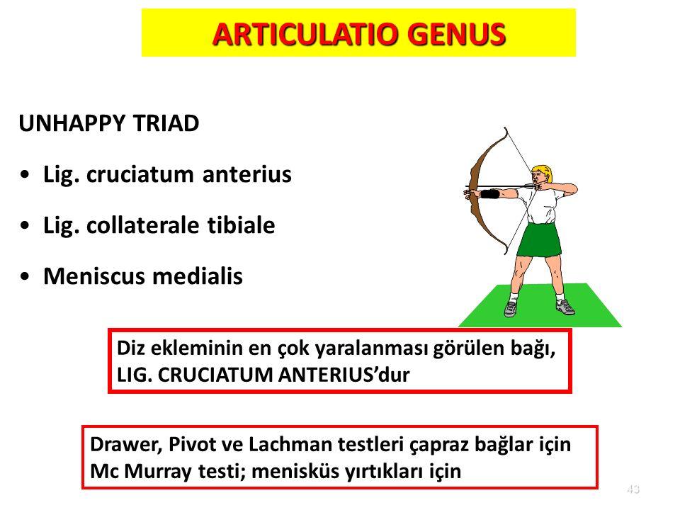 ARTICULATIO GENUS UNHAPPY TRIAD Lig. cruciatum anterius