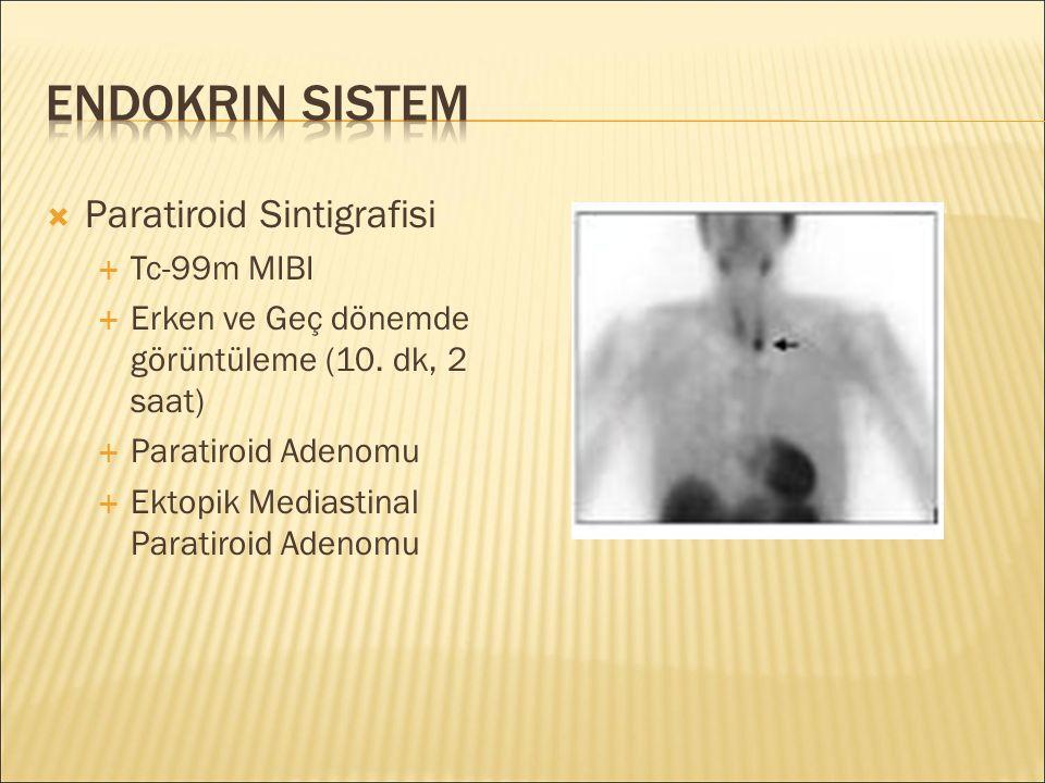 Endokrin Sistem Paratiroid Sintigrafisi Tc-99m MIBI