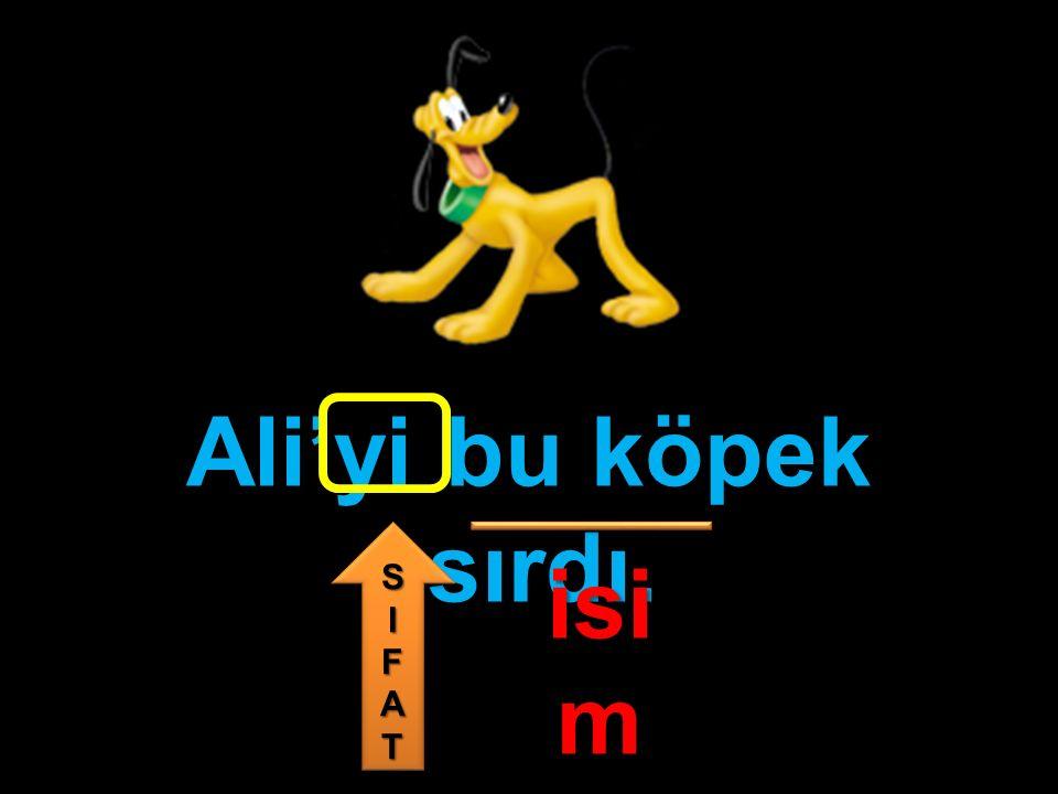 Ali'yi bu köpek ısırdı. isim