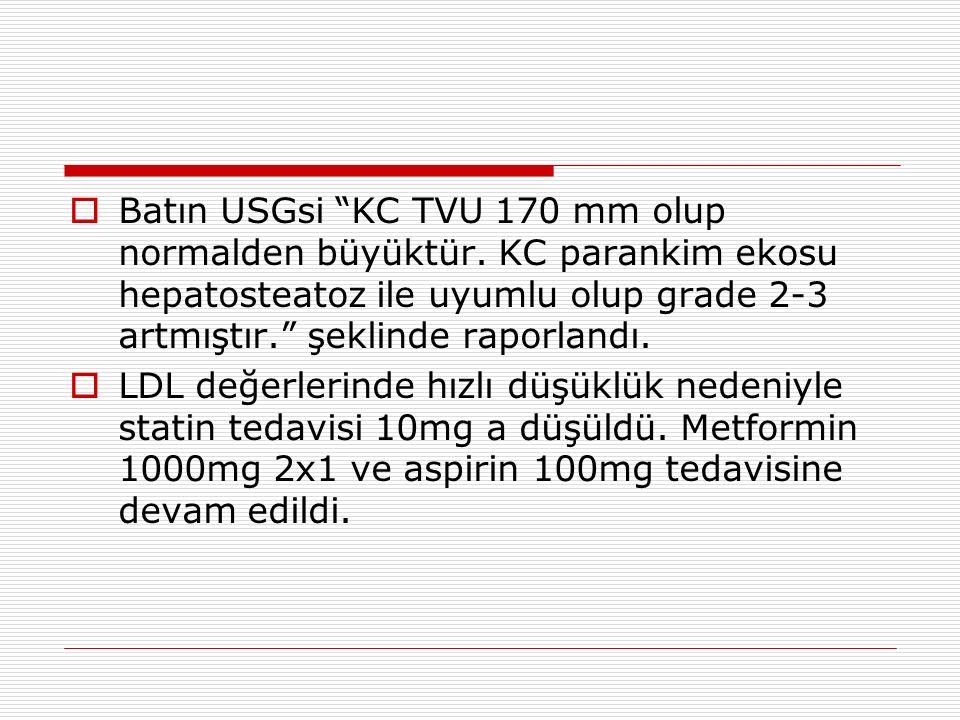 Batın USGsi KC TVU 170 mm olup normalden büyüktür