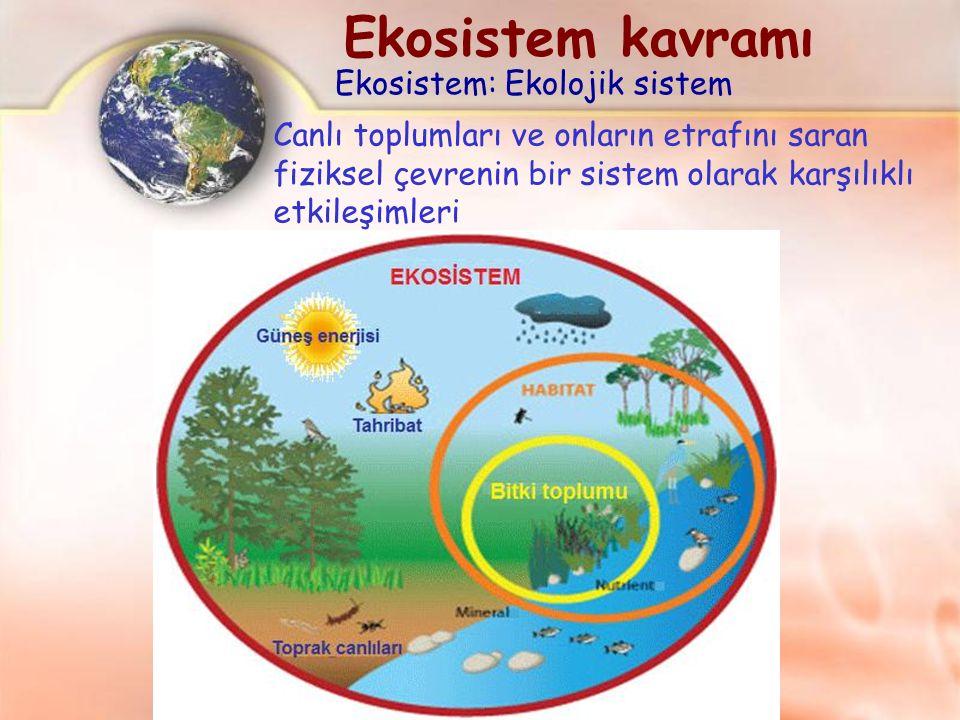 Ekosistem kavramı Ekosistem: Ekolojik sistem