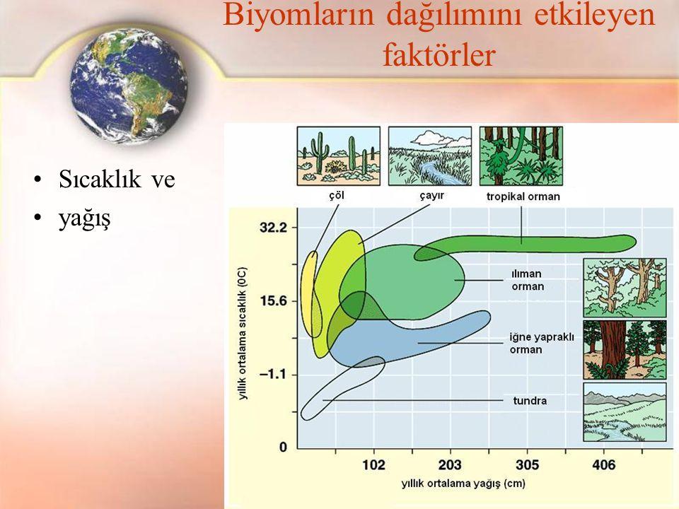 Biyomların dağılımını etkileyen faktörler