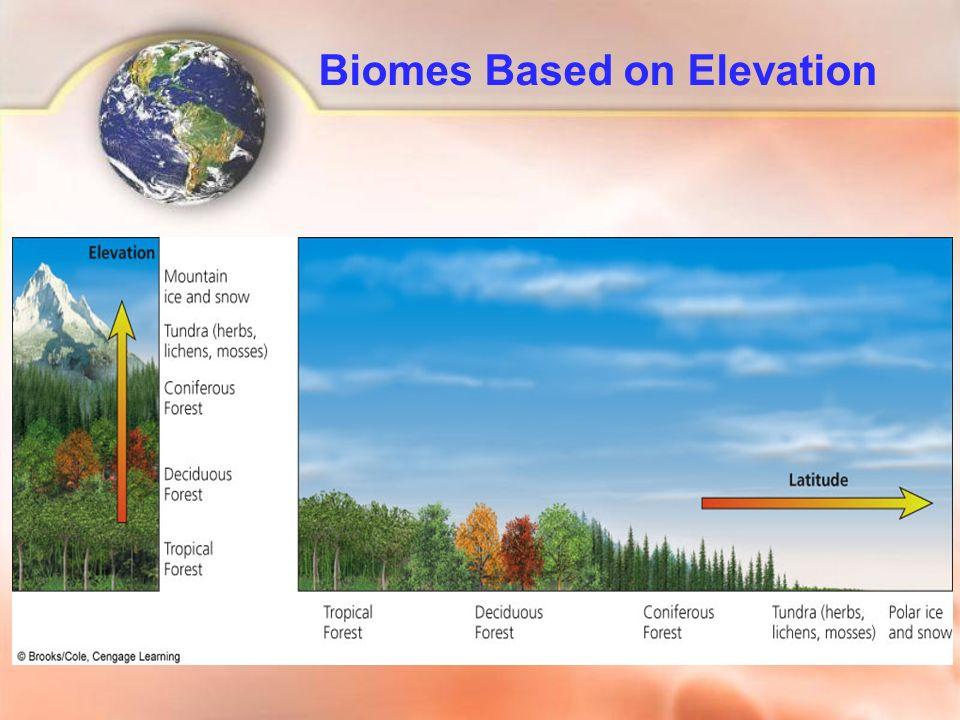 Biomes Based on Elevation