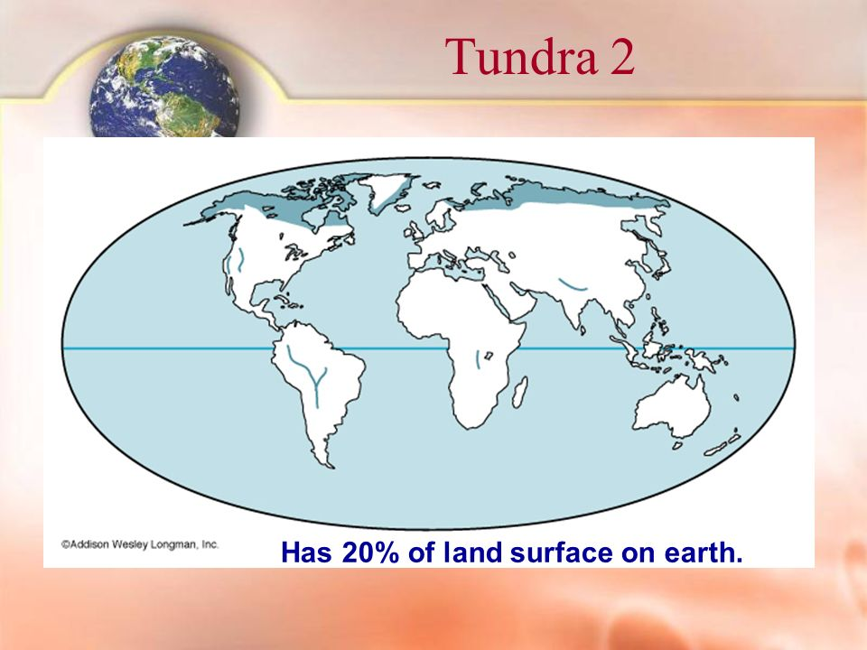Tundra 2 Has 20% of land surface on earth.