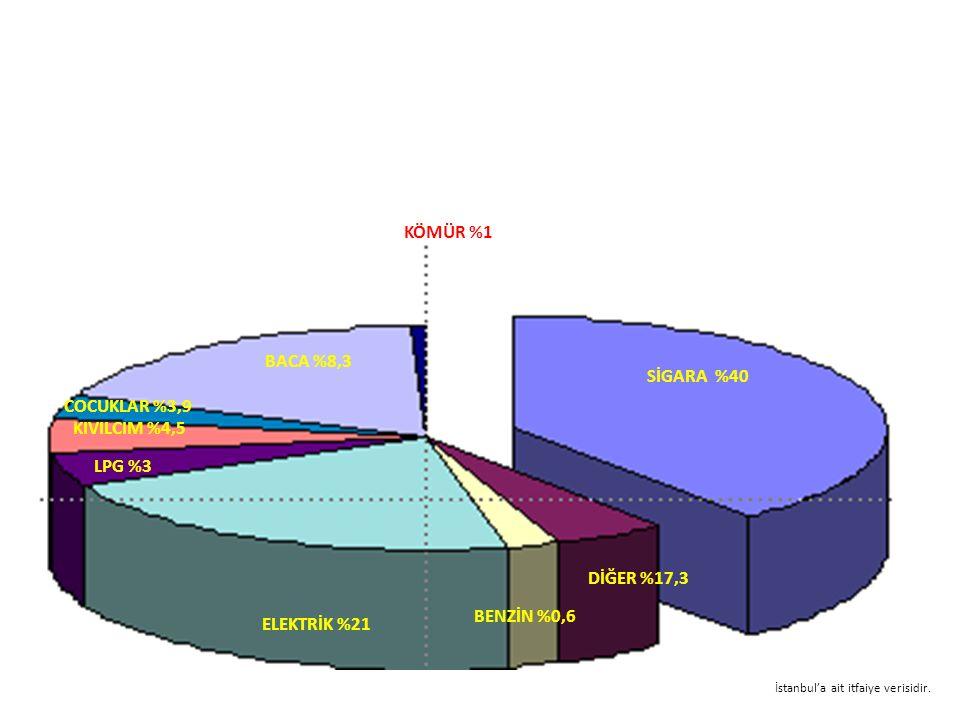 KÖMÜR %1 BACA %8,3 SİGARA %40 COCUKLAR %3,9 KIVILCIM %4,5 LPG %3