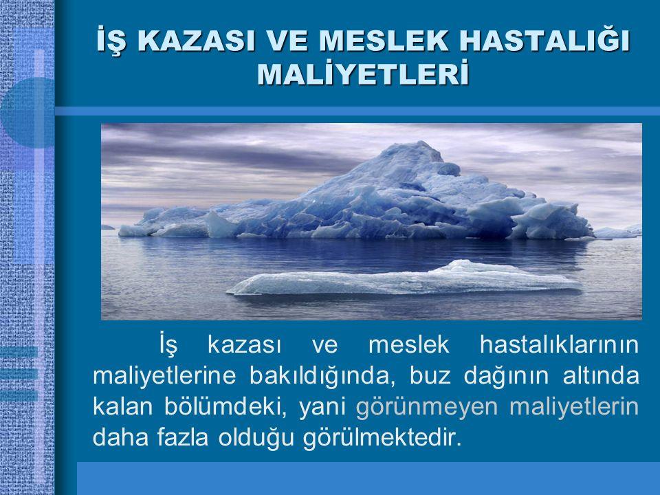 İŞ KAZASI VE MESLEK HASTALIĞI MALİYETLERİ