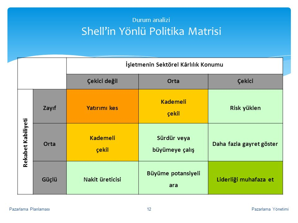 Durum analizi Shell'in Yönlü Politika Matrisi