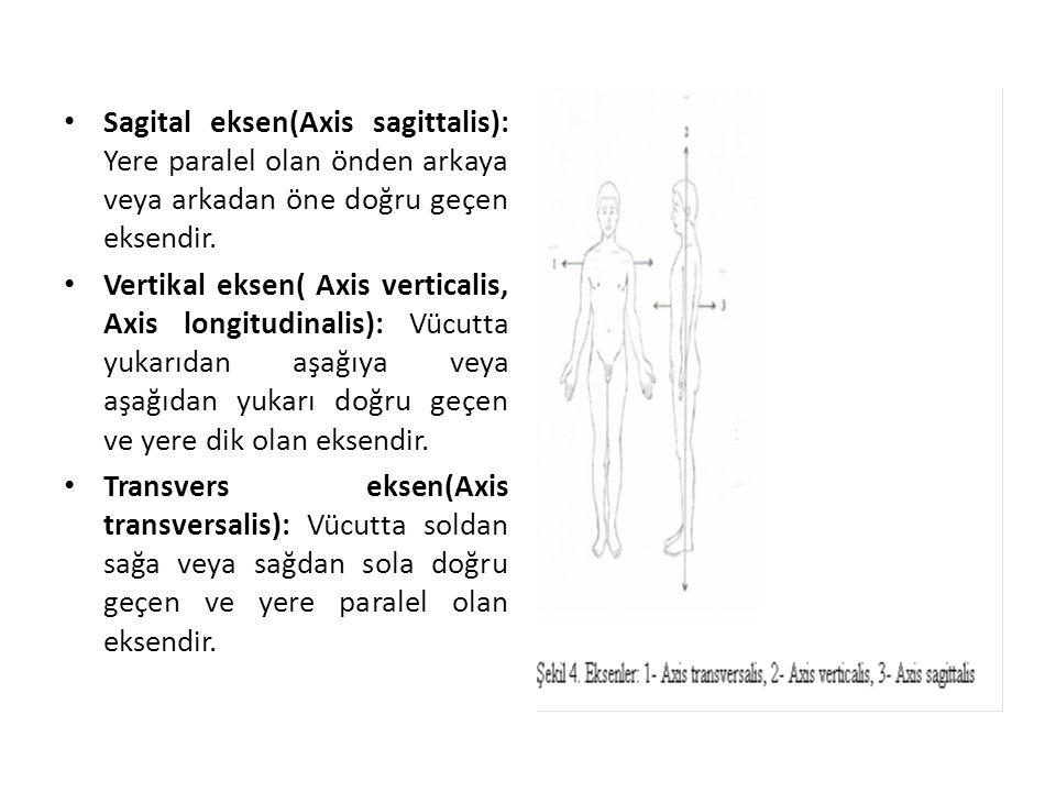 Sagital eksen(Axis sagittalis): Yere paralel olan önden arkaya veya arkadan öne doğru geçen eksendir.
