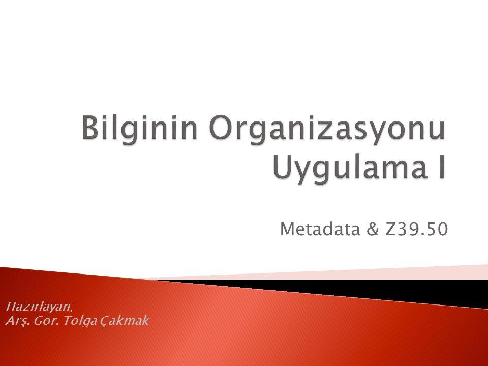 Bilginin Organizasyonu Uygulama I