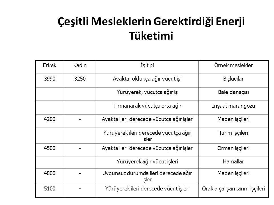 Çeşitli Mesleklerin Gerektirdiği Enerji Tüketimi
