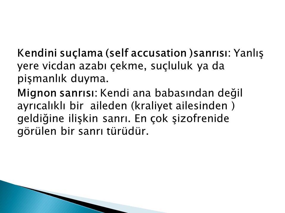 Kendini suçlama (self accusation )sanrısı: Yanlış yere vicdan azabı çekme, suçluluk ya da pişmanlık duyma.