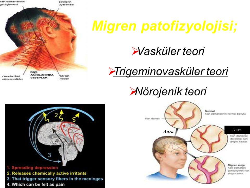 Trigeminovasküler teori