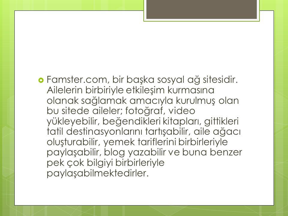 Famster. com, bir başka sosyal ağ sitesidir