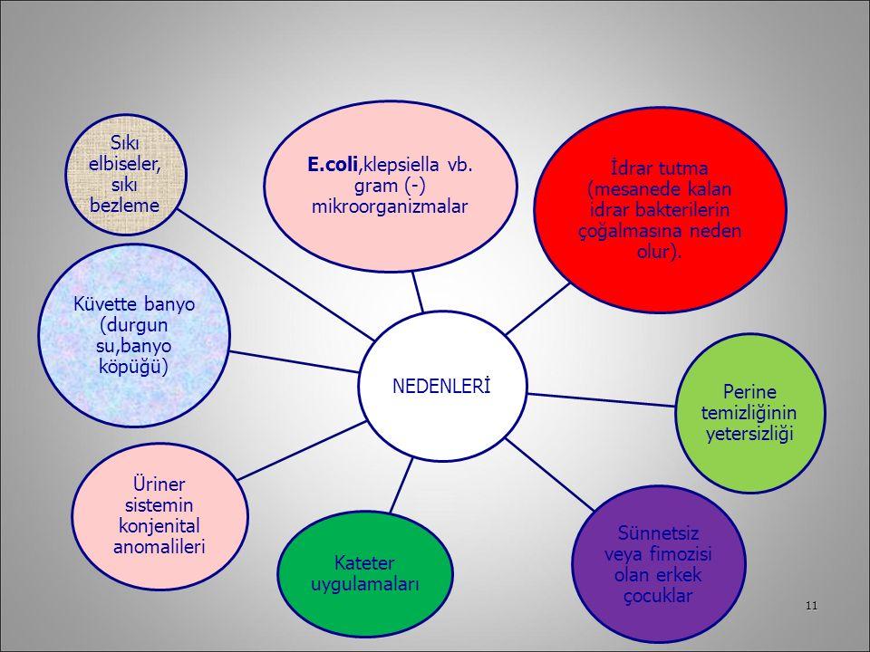E.coli,klepsiella vb. gram (-) mikroorganizmalar