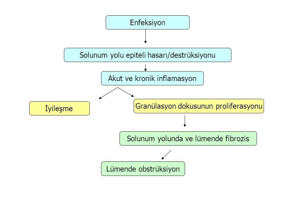 Solunum yolu epiteli hasarı/destrüksiyonu