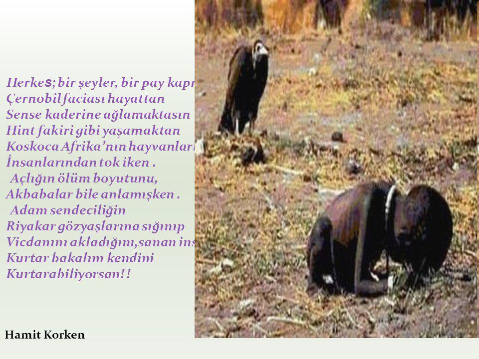 Açlığın ölüm boyutunu, Akbabalar bile anlamışken .