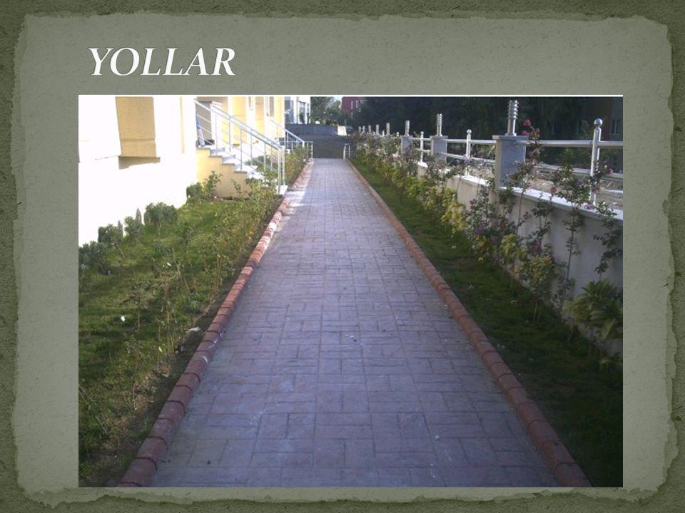 YOLLAR
