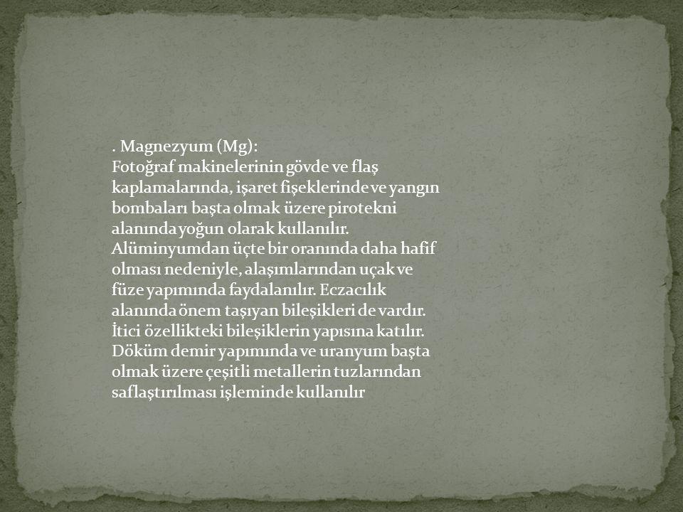 . Magnezyum (Mg):