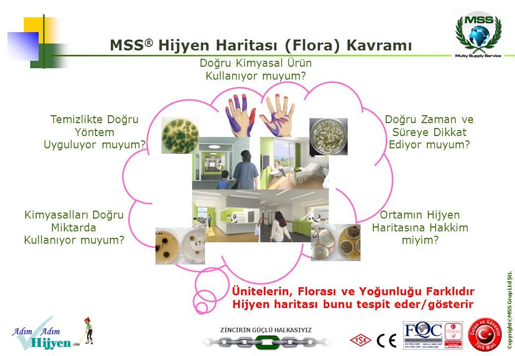 MSS® Hijyen Haritası (Flora) Kavramı