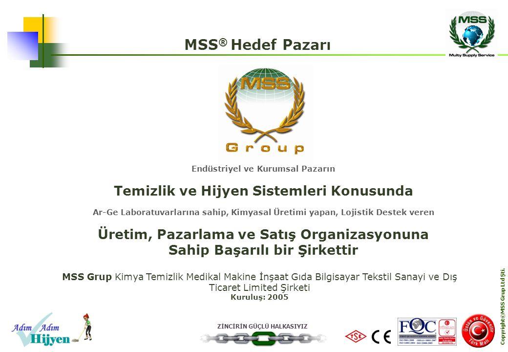 MSS® Hedef Pazarı Temizlik ve Hijyen Sistemleri Konusunda