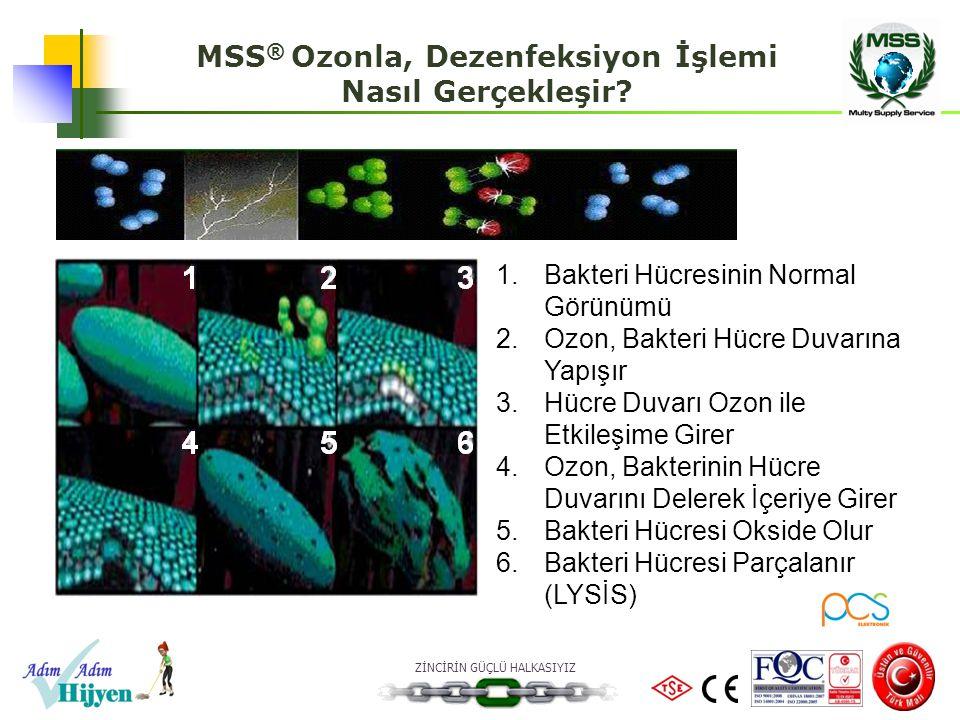 MSS® Ozonla, Dezenfeksiyon İşlemi
