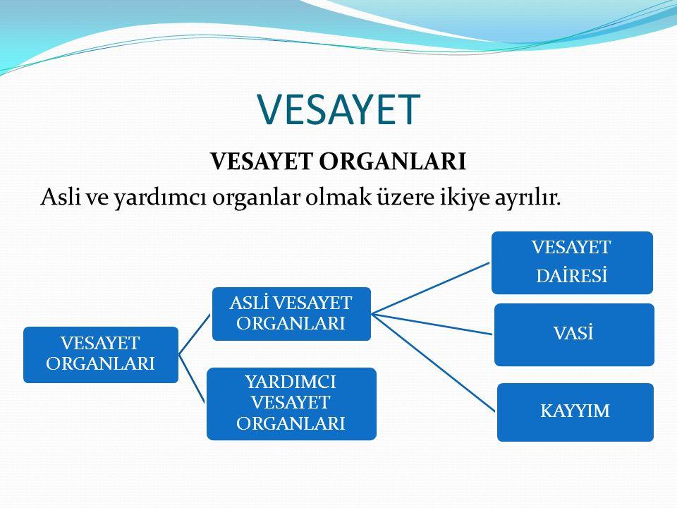 VESAYET ORGANLARI Asli ve yardımcı organlar olmak üzere ikiye ayrılır.