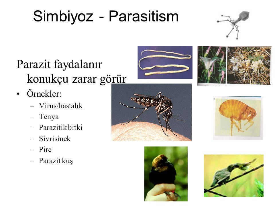Simbiyoz - Parasitism Parazit faydalanır konukçu zarar görür Örnekler: