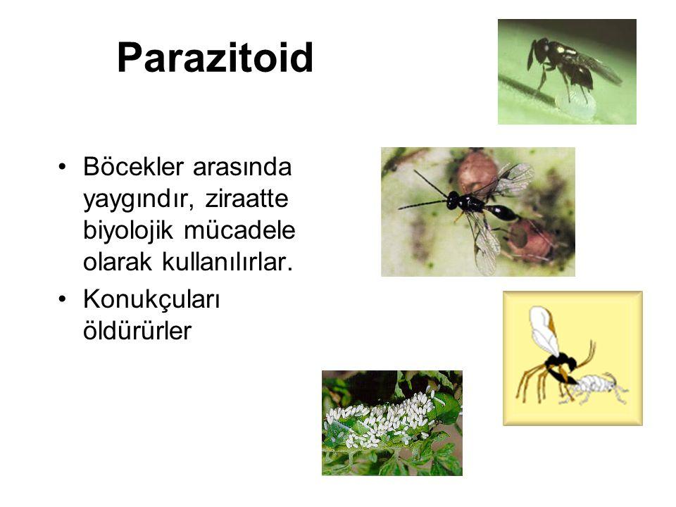 Parazitoid Böcekler arasında yaygındır, ziraatte biyolojik mücadele olarak kullanılırlar.
