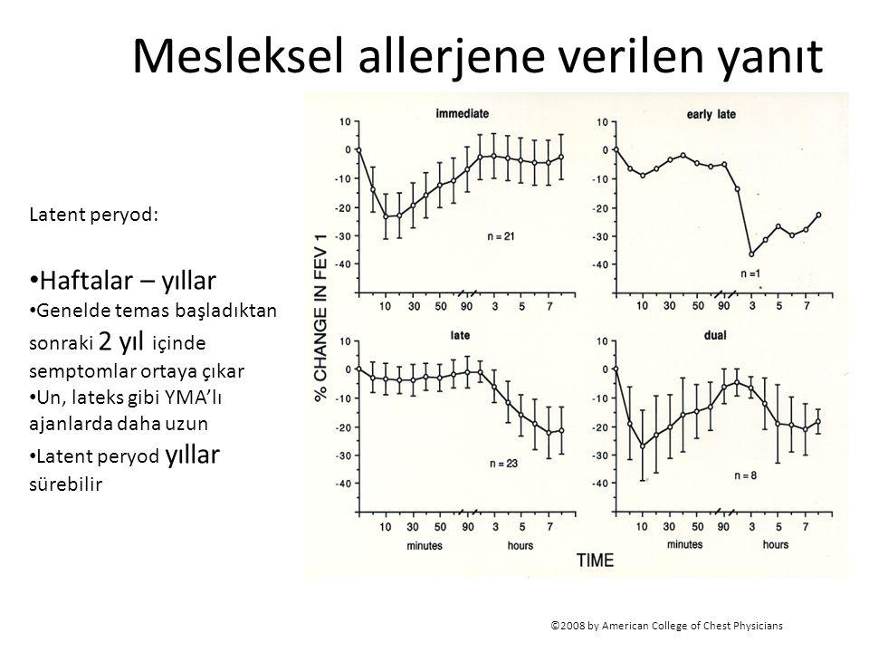 Mesleksel allerjene verilen yanıt