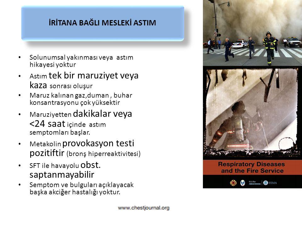 İRİTANA BAĞLI MESLEKİ ASTIM