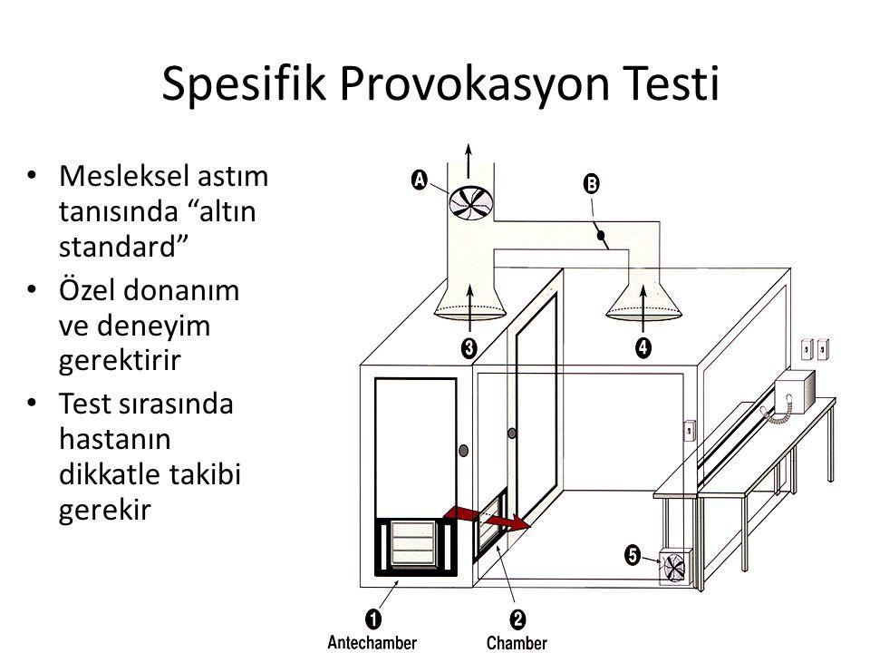 Spesifik Provokasyon Testi