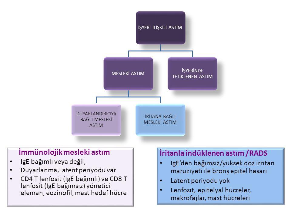 İmmünolojik mesleki astım İritanla indüklenen astım /RADS