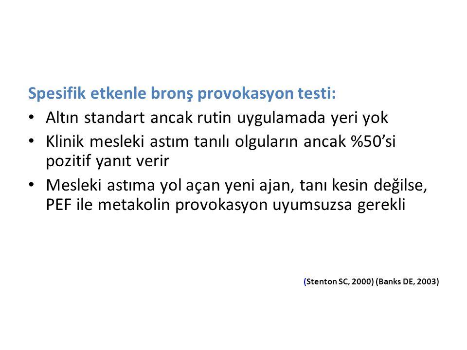Spesifik etkenle bronş provokasyon testi: