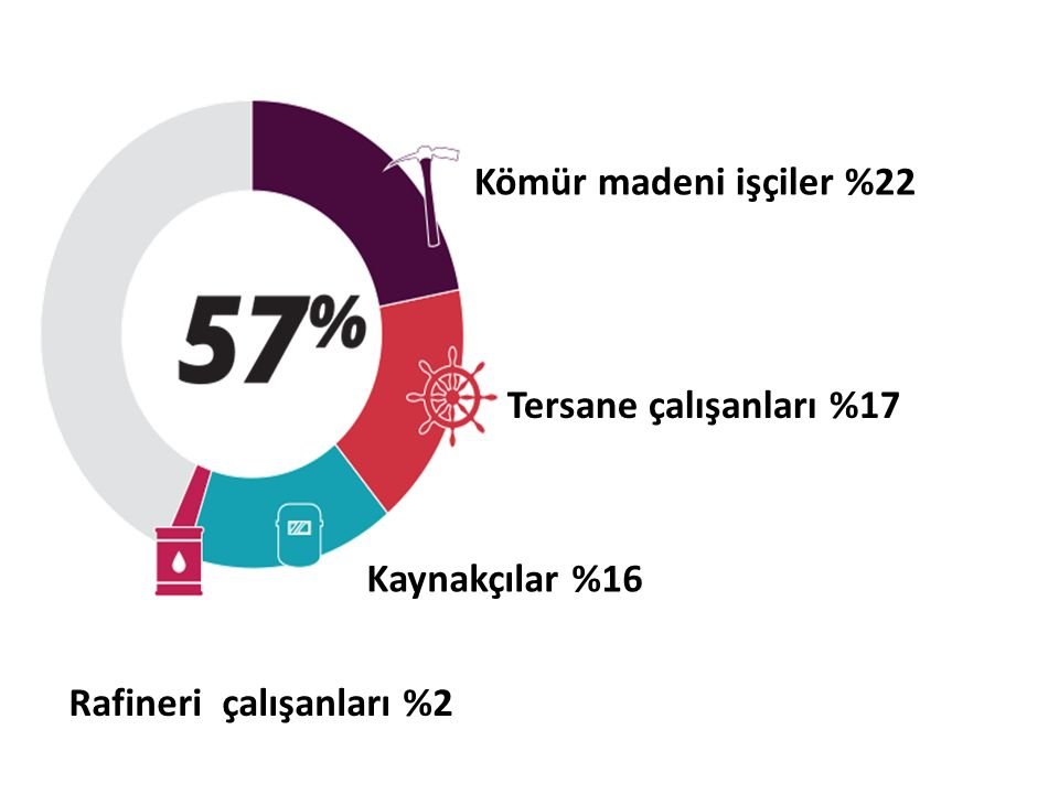 Kömür madeni işçiler %22 Tersane çalışanları %17 Kaynakçılar %16 Rafineri çalışanları %2