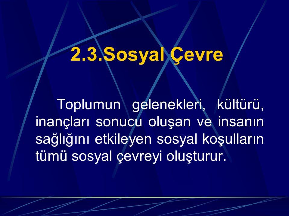 2.3.Sosyal Çevre